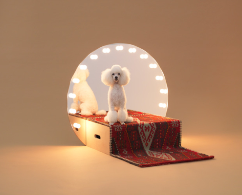 Konstantin Grcic. Architecture for dogs: Paramount. 2012