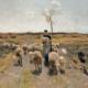 Abbildung von Anton Mauve. Das neugeborene Lamm. 1884