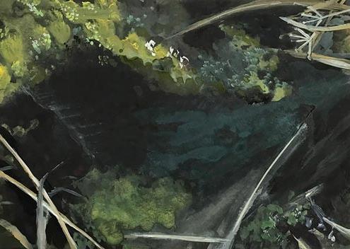 Abbildung von: Marion Niessing. Teich. 2019