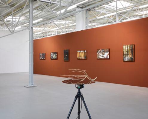 Abbildung von Daniel Steegmann Mangrané. Dog Eye. Ausstellungsansicht Kunsthalle Münster. 2020