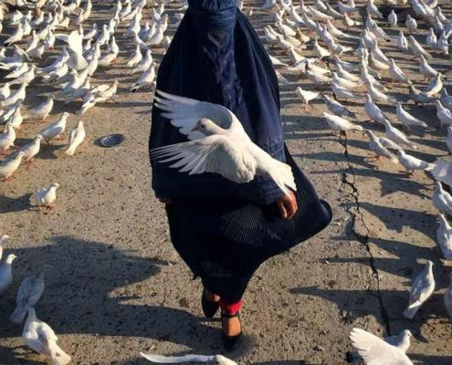Abbildung von Ako Salemi. Afghanistan: The Color Awakens
